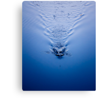 An Image Of A Fishing Bob In The Water Canvas Print