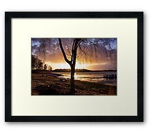 Burnished copper Framed Print