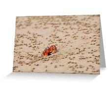 Ghost Crab (Ocypode guadichaudii) 2 Greeting Card