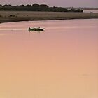 Pink Nile by Hlne David-Cuny