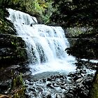 Liffy Falls near Deloraine Tasmania by MisticEye