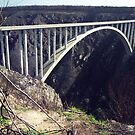 Bloukrans Bridge, Garden Route, RSA by Bev Pascoe