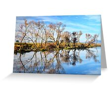 Morning on the South Esk River  Tasmania Greeting Card