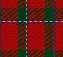 02278 Castle Blaire Unidentified Tartan Fabric Print Iphone Case by Detnecs2013