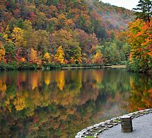 Trout Pond in the Fall by vivsworld