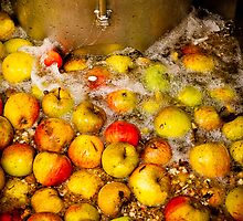 Washing English Cider Apples by mlphoto