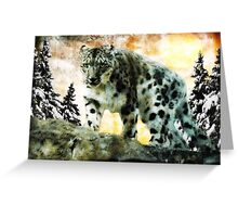 On The Prowl For Snow... Greeting Card