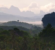 Kao Sok, Thailand Landscape by Duane Bigsby