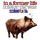 In a former life, Mister Pig was Miss USA by michaelroman