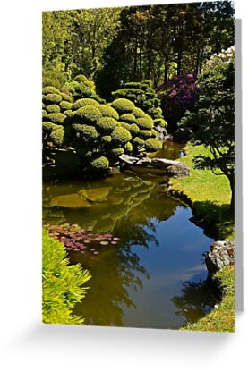 Japanese Tea Garden by Barbara  Brown