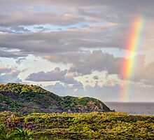 Cape Byron Rainbow by Cheryl Styles