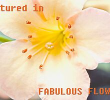 """Featured in Fabulous Flowers"" Banner by Marian Sedwell"