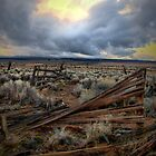 Way Out There by Charles &amp; Patricia   Harkins ~ Picture Oregon