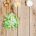 Deconstructed Caesar Salad.  by sallyrose1