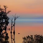 ALBEMARLE Sound Edenton, NC by RichardBlanton