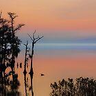 ALBEMARLE Sound Edenton, NC by RichardBlanton
