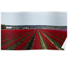 "RED for ""Joy"" - Jump'n for Joy in the Tulip Patch! Poster"