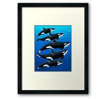 The Antibes Orcas Framed Print
