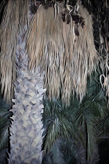 Palm leaves by missmoneypenny