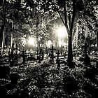 Night at the Cemetery by recklessrocker