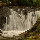 small falls in camp ground by jaymeb21