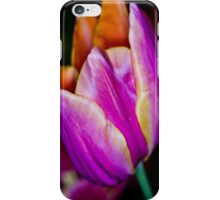 Purple Tulip iPhone & iPod Cases iPhone Case/Skin