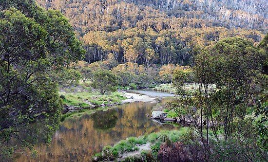 Thredbo River I by Harry Oldmeadow