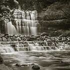 Liffey Falls (Tas) by John Conway