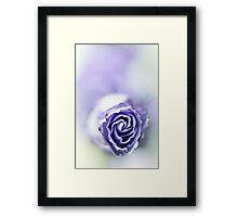 Purple breeze....(soft 2) Framed Print