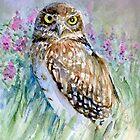 Watercolor Owl Seasons by Redilion