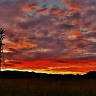 Windmill, Sunset, Romsey by Kylie Mckay