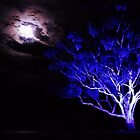 Blue Tree, Heart Moon. by Kylie Mckay