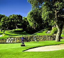Valderrama Golf Club by Kent DuFault