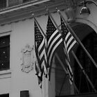 Patriotic New York City  (B&W) by jeffreynelsd