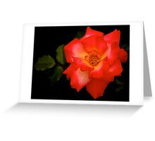A Rose for Mom Greeting Card
