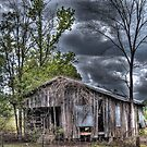 Old Shack  by venny