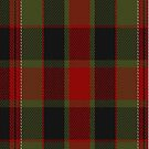 02288 Antagonish A Nameless Tartan Fabric Print Iphone Case by Detnecs2013