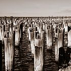 Princes Pier pylons by LadyFran