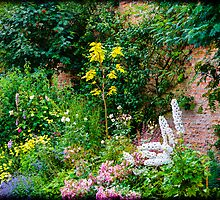 English Country Garden by mlphoto