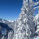 Alpine Mountain Snowscape by mlphoto