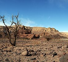 Arava desert near Eilat by PhotoStock-Isra