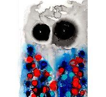 Owl 3 Photographic Print