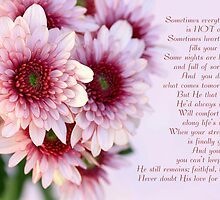 Pink Daisy Sympathy Card with Poem by Micklyn2