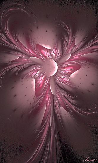 Fleur de Mai by innacas