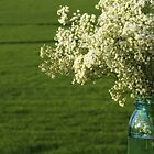 Baby&#x27;s Breath in a Jar by reindeer