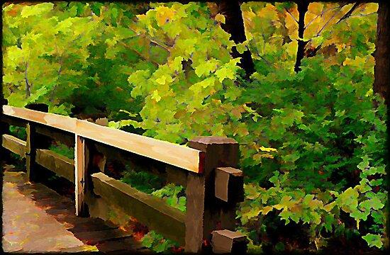 Nature Walk © by Dawn M. Becker