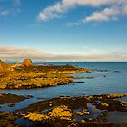 Bass Rock from Dunbar Scotland by mlphoto