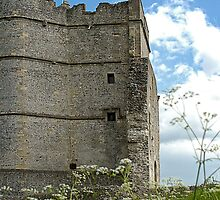 Donnington Castle Berkshire England by mlphoto