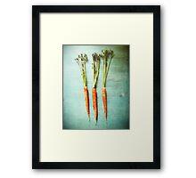 Three Carrots Framed Print