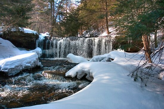 Winter Afternoon At Oneida Falls by Gene Walls